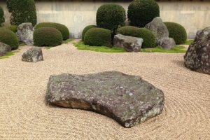 Crushed Granite, Large Stone and Plants